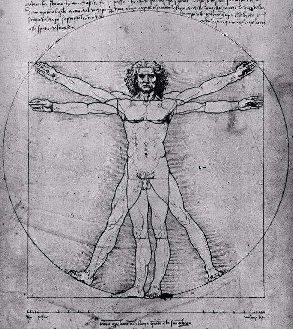leonardo da vinci drawings. drawing by Leonardo da