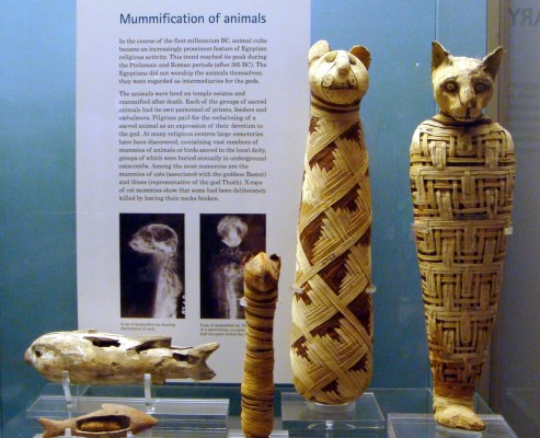 british museum exhibits